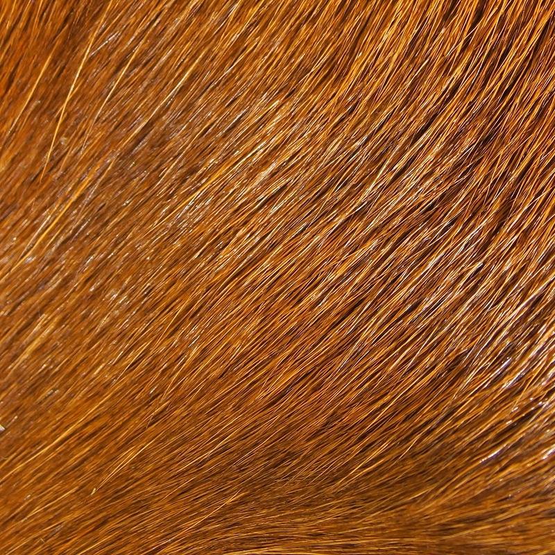 Deer belly hair hot pink     DBH-14